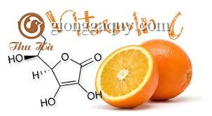 Khi nào cần phải sử dụng vitamin C trong chăn nuôi heo?